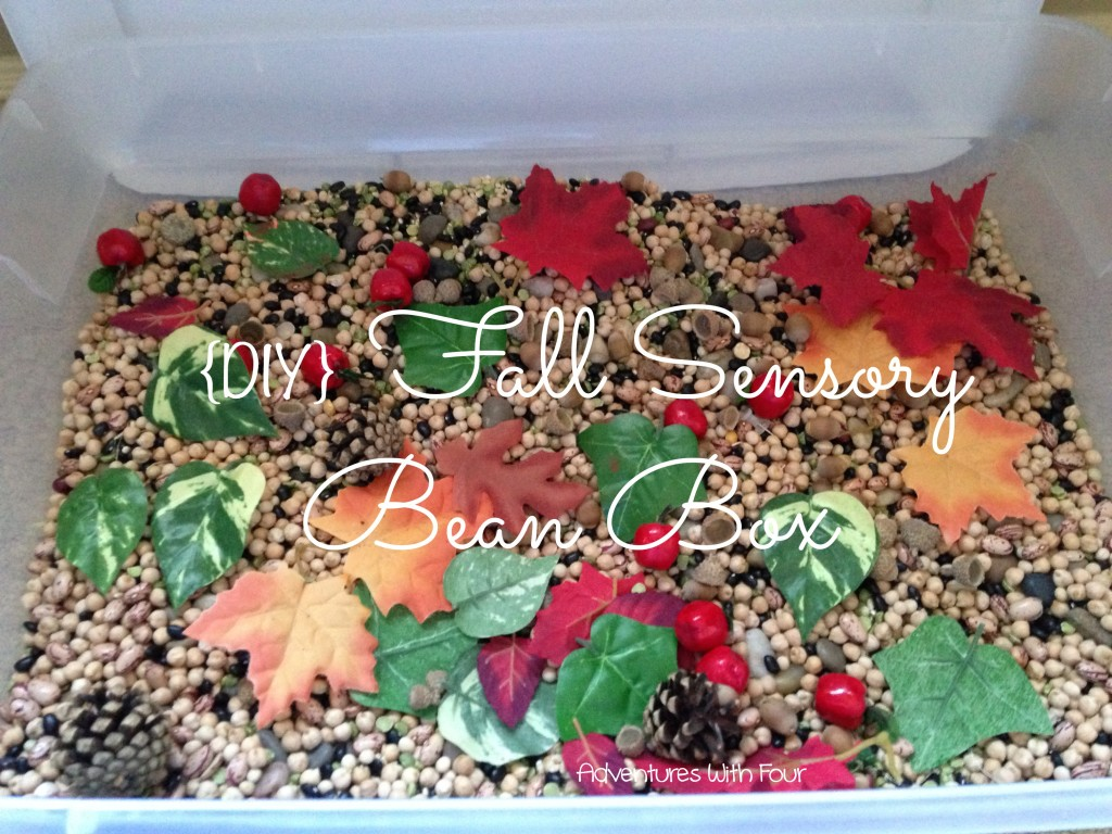 Fall Sensory Bean Box