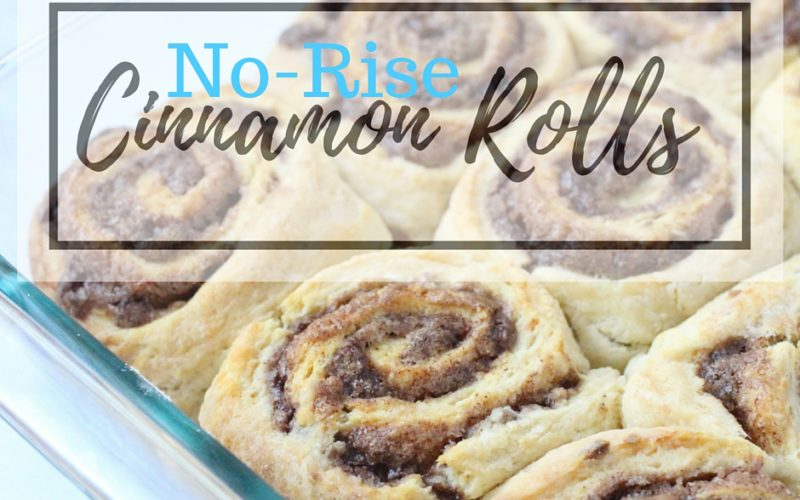 No-Rise Cinnamon Rolls perfect for lazy summer mornings