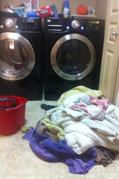My washer just threw up….