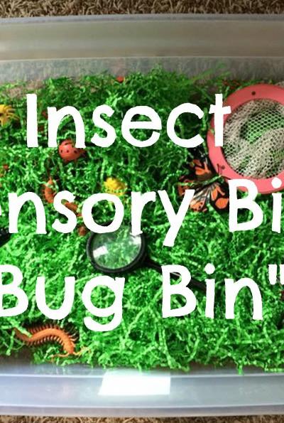"""Bug Bin"" Insect Sensory Bin"
