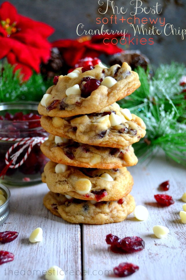Cranberry-White-Chip
