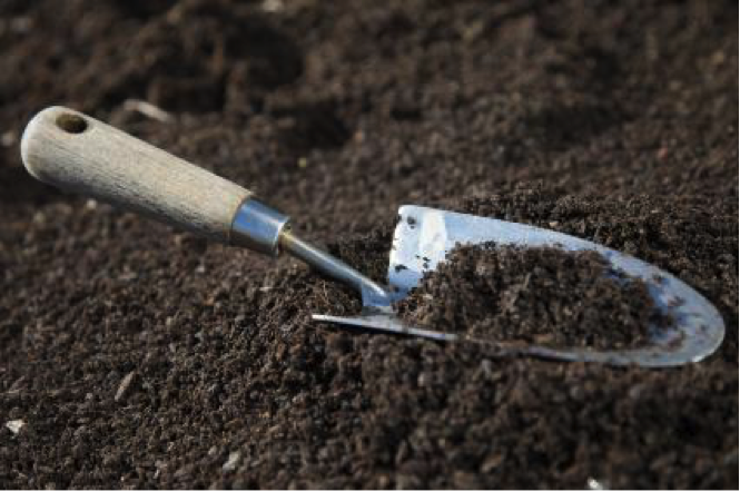 10 essential tools to have a beautiful garden for Gardening tools you need